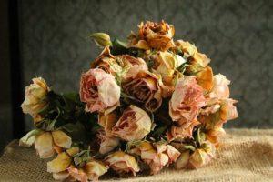 シックな色の花束