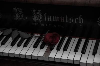 「BG~身辺警護人~」第2話 感想│全盲の天才ピアニストを警護