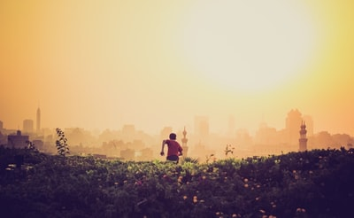 映画「ヒメアノ~ル」感想|壮絶ないじめが原因で起こる多くの悲劇